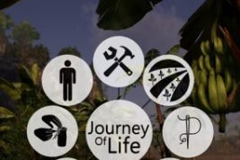 Nombres Journey of Life